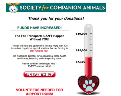 804societyforcompanionanimalsfunds