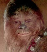 416chewy