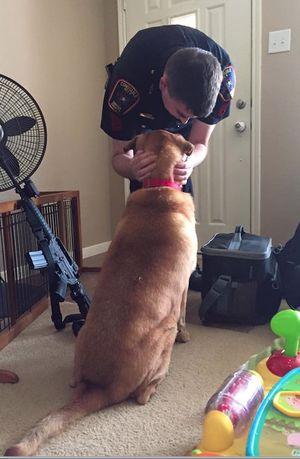 910houstoncopdog