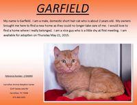 611carrgarfield
