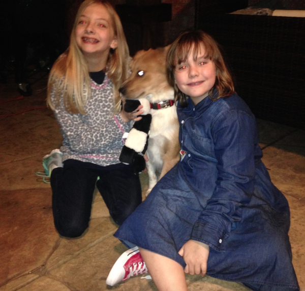For Thanksgiving The Little Dog Who Rode To Safety Readlarrypowell Com