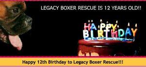 321boxer birthdayartwork