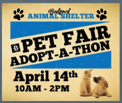 410bedfordpetfair