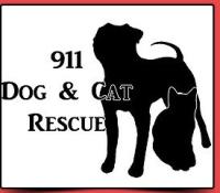 4-19-21 9111 njh logo