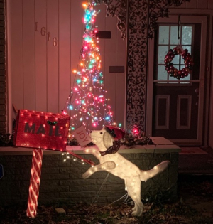 1222christmasdog