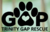 727triity gap logo