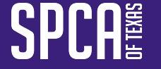 728 spca logo