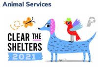 8-25plano clear shelters
