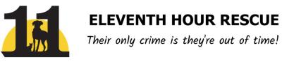 4-19-21 eleventh hour logo