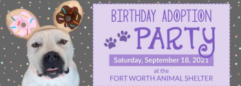 9-16 FW adoption party