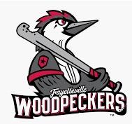 10-01 fayettevillewoodpeckers
