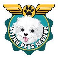 10-17 18flying pet logo