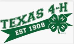 9-30 texas4h